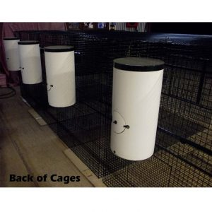Back Of Bird Cages