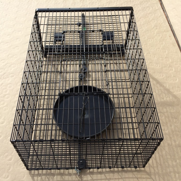 Back of manual and automatic vermin trap-min