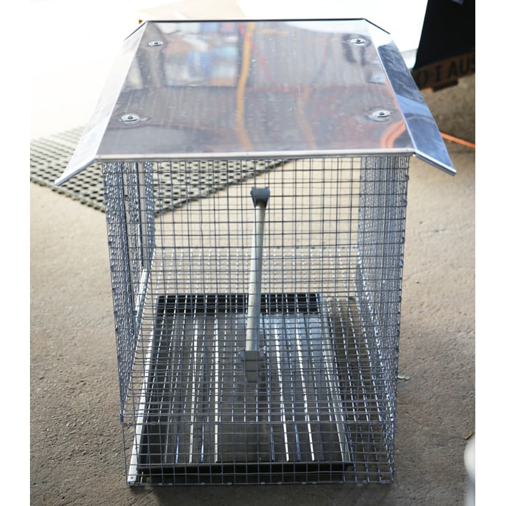 Side of chicken cage