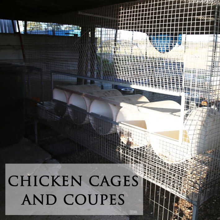 chicken cages and coupes